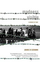 madness-visible-book-cover-tn
