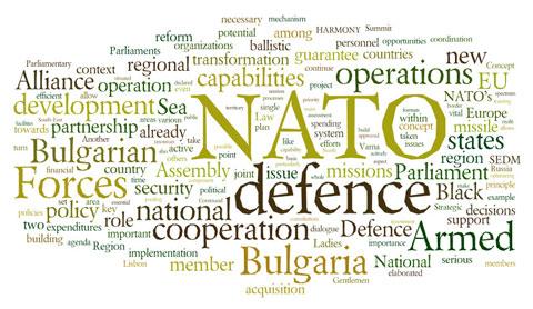 anguelov-bulgarian-vision-for-nato-for-web
