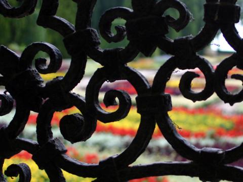 balchik-garden-iron-work-480x360