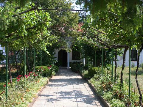 Monastery garden with grape arbor