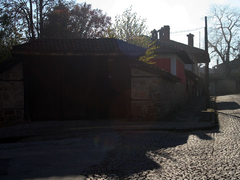 rayna-knyagina-house-museum-street-view
